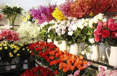 Shop hoa tươi An Giang