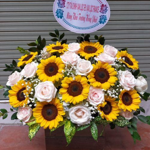 Giỏ hoa chúc mừng tại shop hoa tươi Bến Tre